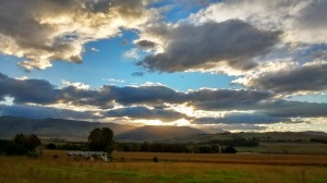 Ardmore Guest Farm set against the Drakensberg Mountains